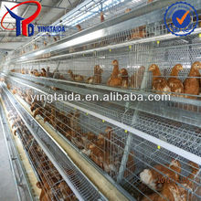 roof for poultry house