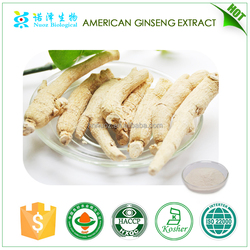 Herb Medicine for Health Food & Beverage American ginseng extract