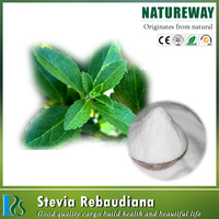 extraction stevia plant