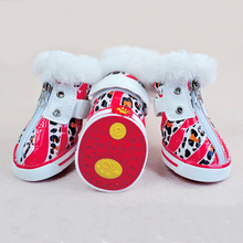 nice and red beautiful cat and dog shoes