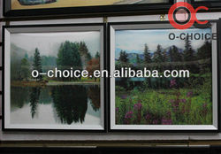 Hot Selling Home Decor 3d Pictures Natural Animation