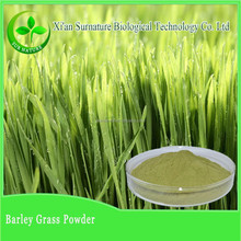 100% Nature barley malt extract /organic barely extract powder manufacture supply
