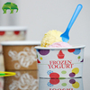 Ice Cream Tubs, Gelato Cups, Paper Bowls and Disposable Food Containers