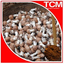 Dual extract(70% concentration ethanol)/Agaricus Blazei extract powder 20:1 TLC