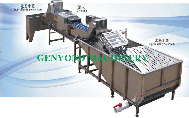 10000pcs/h stainless egg electronica grading packing machine