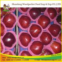 red mature huaniu apple