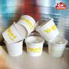 ice cream cup/ice cream brand marketing