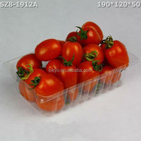 Disposiable rectangular plastic fruit tray