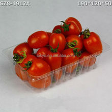 Disposiable rectangular plastic fruit tray