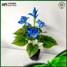 Hot New Products For 2015 Potted Plant