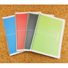 plastic cover spiral notebook , spiral notepad ; PP notebook , A5 spiral notebook