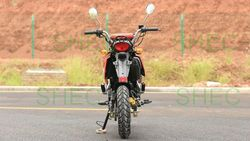 Motorcycle 250cc hot cargo three wheel motorcycle