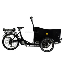 pedal assisted family three wheel electric bicycle cargo