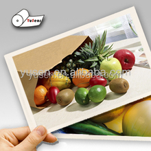 Factory Sell Glossy RC Inkjet Photo A4 Paper