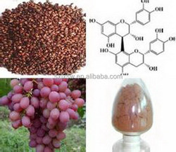 High technology china manufacturer grape seed extract softgel supplier