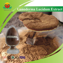 Hot Sale Ganoderma Lucidum Extract