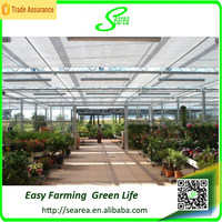 Economical high quality used commercial greenhouses glass green house