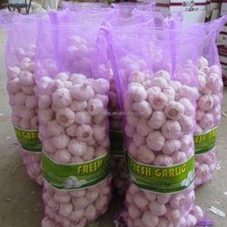 Chinese 2014 Fresh Garlic and Ginger 20kg/mesh bag
