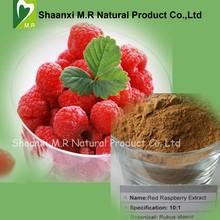 Factory Price Raspberry Extract 10:1