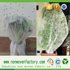 Anti UV polypropylene spunbond nonwoven fabric material for fruit tree bags