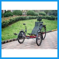 adult passenger tricycle for sale