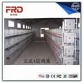 frd-- الخدمة الجيدة h a نوع طبقة قفص الدواجن للبيع