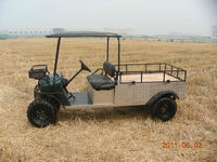 2015 Electric utility vehicle/UTV 48V
