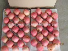 chinese fresh red fuji apple