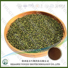 Botanical extracts manufacturer supply Green Tea Extract Polyphenol and EGCG