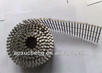 Stainless Steel Coil Nail(high quality)