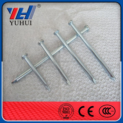 factory directly sale common nail and steel nail