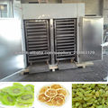 fruta máquina de secado