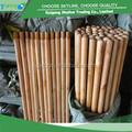 top venda de eucalipto de madeira envernizada vassoura alça