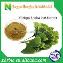 Free Sample Ginkgo Biloba Leaf Extract Powder(Flavones24% Lactone 6%)
