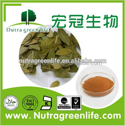 Naturalin High quality red clover seed extract for Medicine