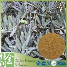100% Original Olive Leaf Extract Olive Leaf Powder