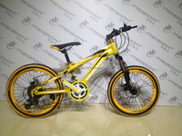 20 inch strong downhill bicicletas mountain bike MSD-E220 MTB bike with colourful tyre