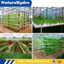 Low Cost, Low Water, Low Nutrient but High Productivity Hydroponic Equipment