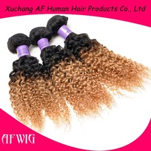 High Quality Brazilian Two Tone Ombre Remy Hair Extension Brazilian Human Hair Afro Kinky Curly