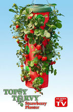 hanging upside down strawberry planter