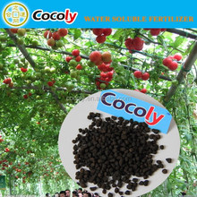 COCOLY Granular Water Soluble Fertilizer Top quality NPK for crops