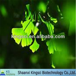 High quality of natural water soluble ginkgo biloba extract