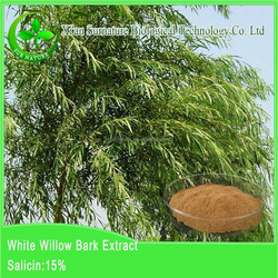 Factory supply high quality White Willow Bark P.E./white willow salicin 98%
