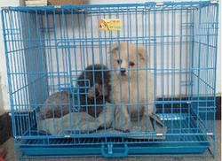 warehouse storage cage