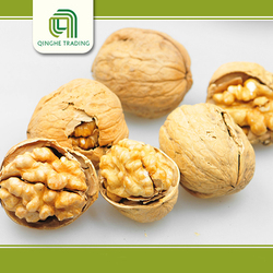 china high quality raw walnuts with shell/without shell from china