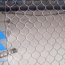 anping hexagonal chicken wire mesh