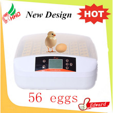 56 Eggs incubator pigeon baskets automatic system CE approved for sale