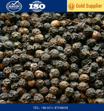 Raw Processing Type and Dried Style Black Pepper