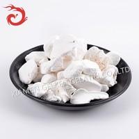 Ceramics cupel pure bone ash or powder or meal.