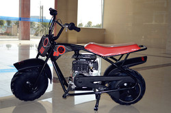 Popular CE and EPA approved mini bike for children from china